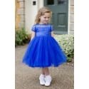Flower Girl / Special Occasion Blue Dress Style 3002